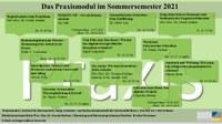 Das Praxismodul im Sommersemester 2021